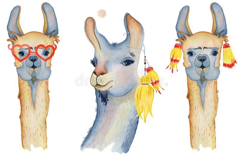 Śliczni lam postać z kreskówki ustawiają akwareli ilustrację, Alpagowi zwierzęta, ręka rysujący styl Odosobniony biały tło ilustracja wektor