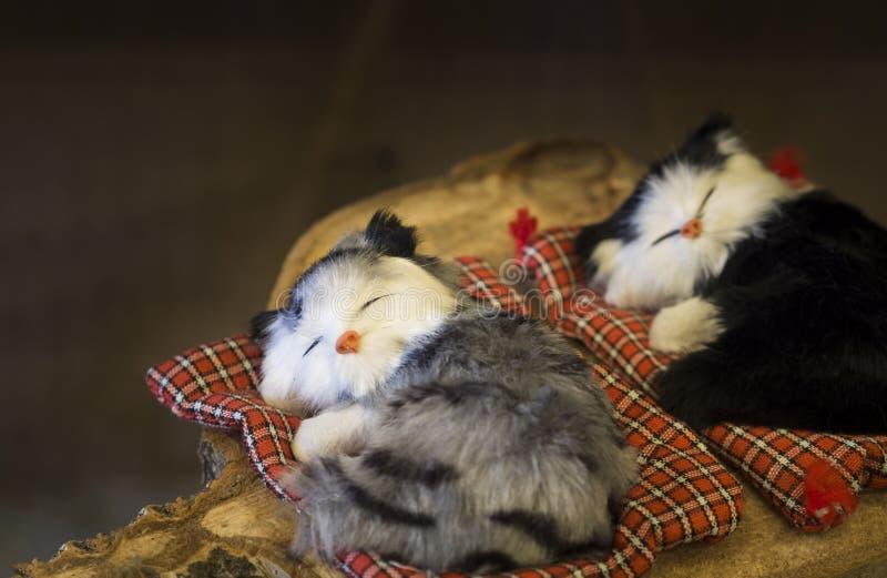 Śliczni mali zabawkarscy koty śpi na małym łóżku na drewnianej desce obraz royalty free