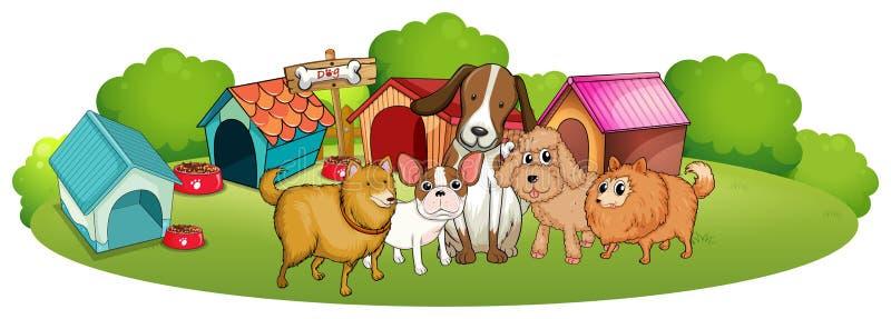 Śliczni psy na zewnątrz doghouses royalty ilustracja