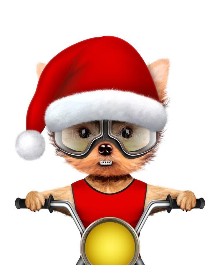 Śliczni psy Santa na siekaczu Bożenarodzeniowy pojęcie ilustracja wektor