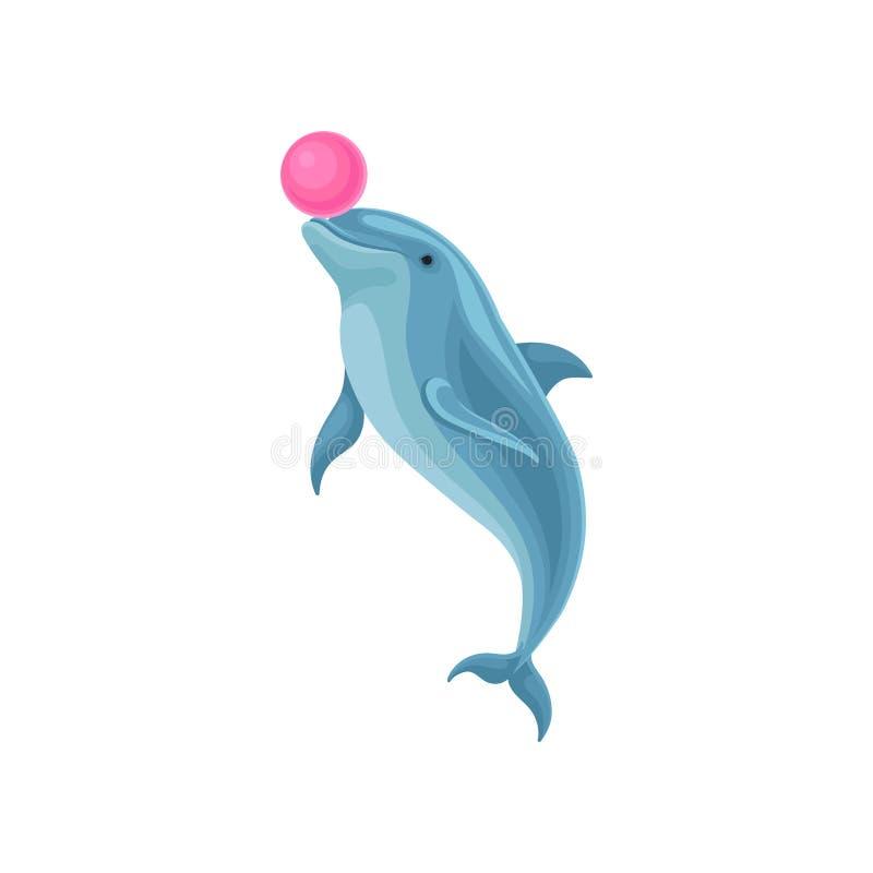 Śliczny błękitny delfin bawić się z piłką przy rozrywki przedstawienia wektorową ilustracją na białym tle royalty ilustracja