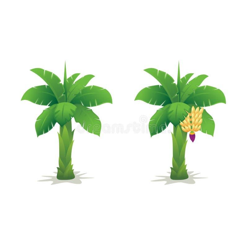 Śliczny Bananowego drzewa ilustraci wektor ilustracji