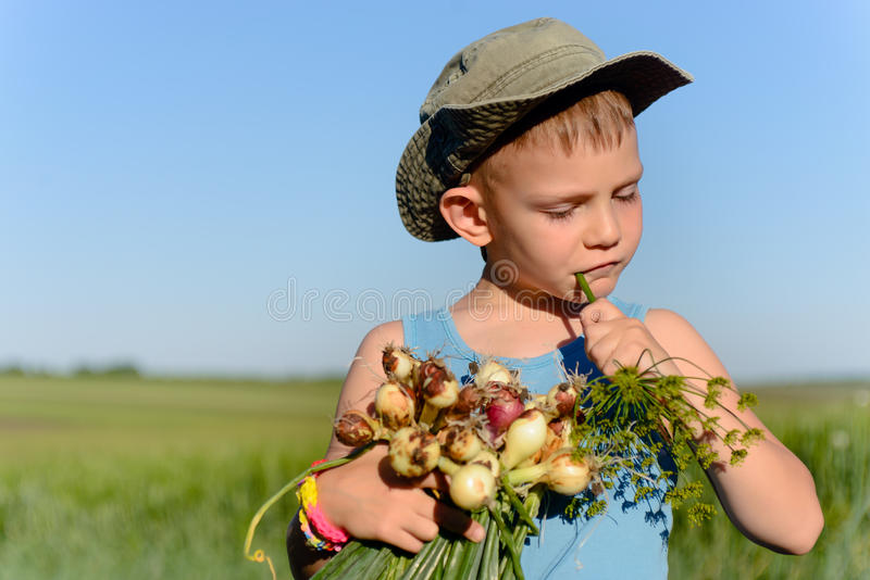 Śliczny chłopiec łasowanie i mienie Zielone cebule zdjęcie royalty free