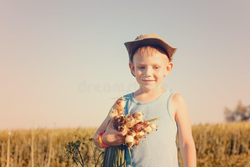 Śliczny chłopiec łasowanie i mienie Zielone cebule zdjęcie stock