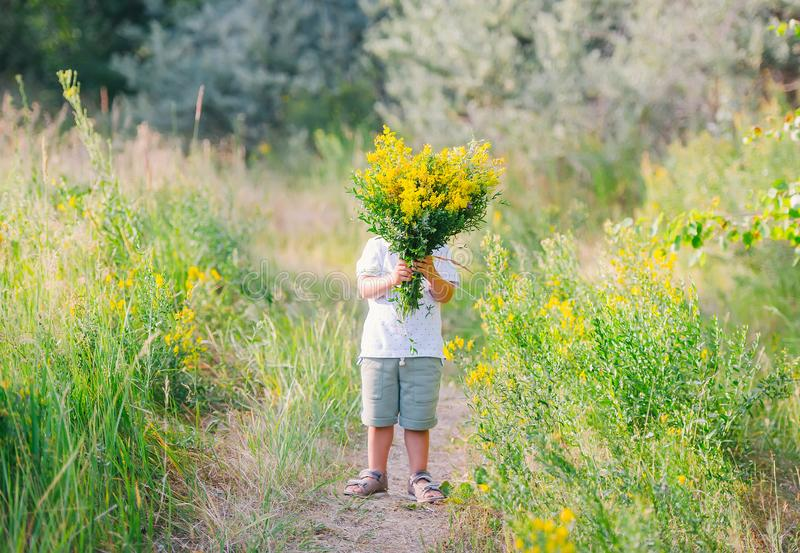 Śliczny chłopiec mienie i dawać bukiet żółci dzicy kwiaty chuje jego stawiamy czoło za nim zdjęcie royalty free