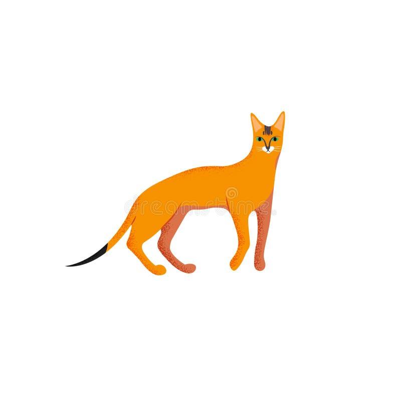 Śliczny charakter kreskówki styl kot Ikona abyssinian traken dla różnego projekta ilustracja wektor