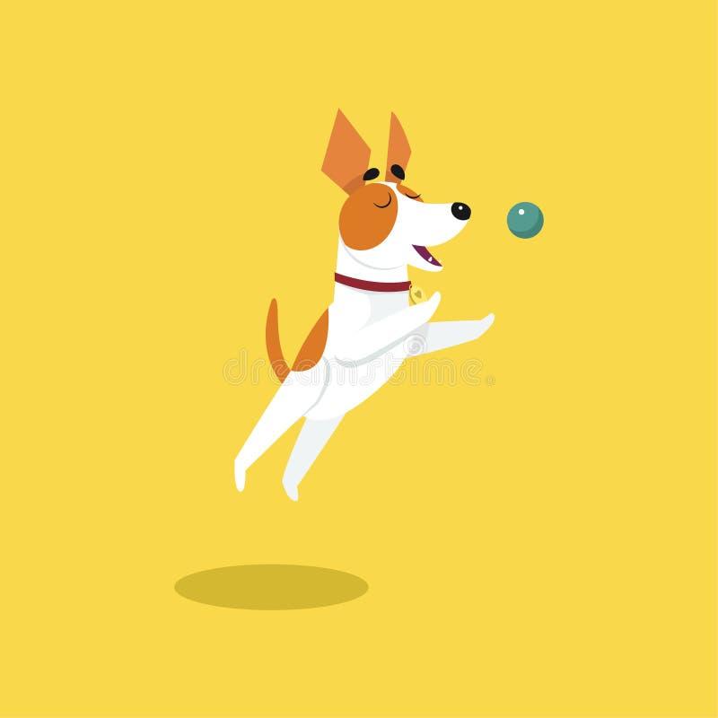 Śliczny dźwigarki Russell terier bawić się z piłką, śmieszna zwierzęcia domowego zwierzęcia charakteru kreskówki wektoru ilustrac ilustracji
