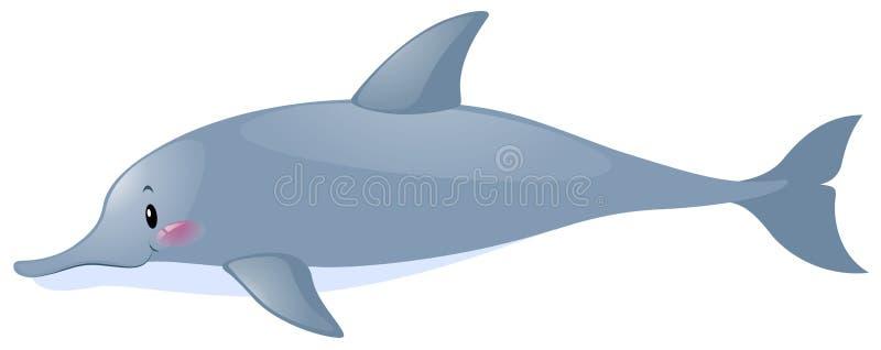 Śliczny delfin na białym tle ilustracji