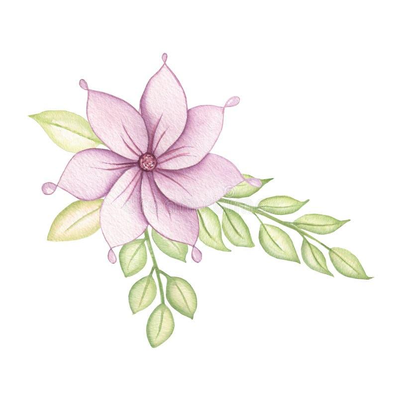 Śliczny Kolorowy kwiecisty botaniczny bukiet z liśćmi i kwiatami, jagody akwarela Wiosna i lato projekt dla zaproszenia, ilustracji