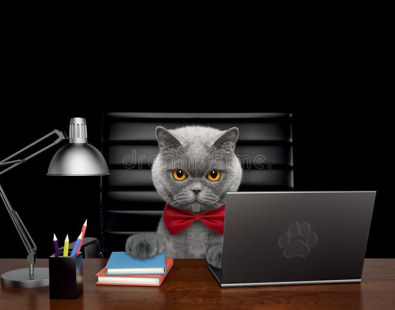 Śliczny kota kierownik robi niektóre pracie na komputerze Odizolowywający na czerni ilustracji