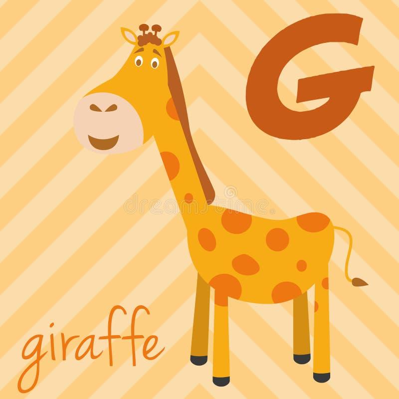 Śliczny kreskówka zoo ilustrował abecadło z śmiesznymi zwierzętami: G dla żyrafy ilustracja wektor
