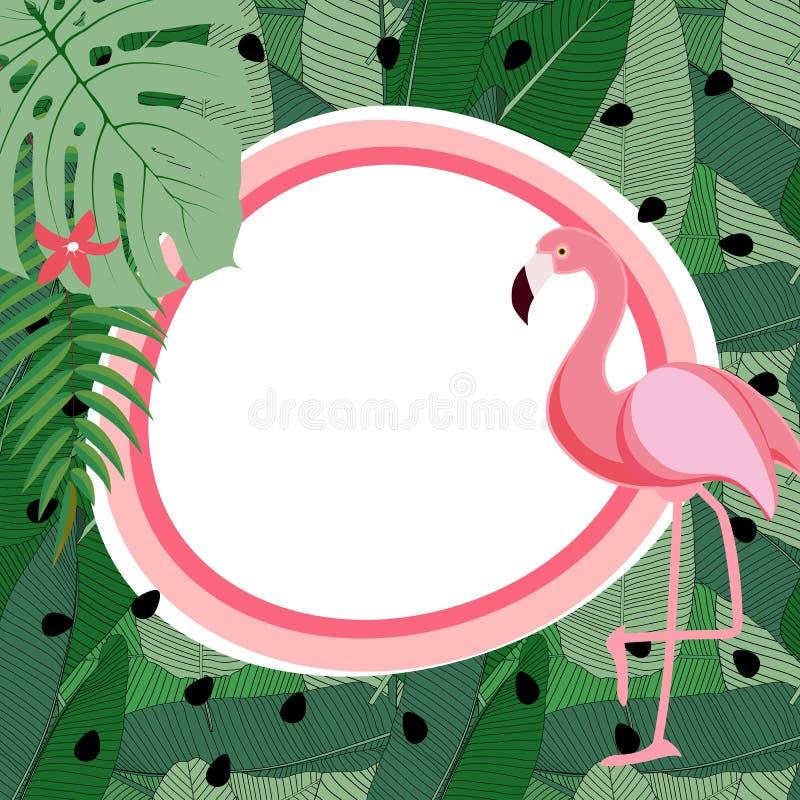 Śliczny lato abstrakta ramy tło z Różową flaminga wektoru ilustracją ilustracja wektor