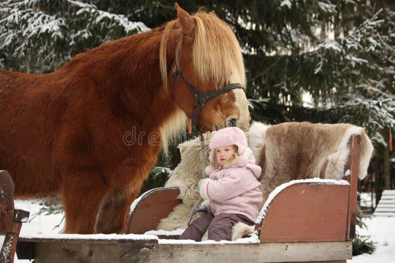 Śliczny małej dziewczynki obsiadanie w dużym palomino łyknięciu i saneczkach zdjęcia royalty free