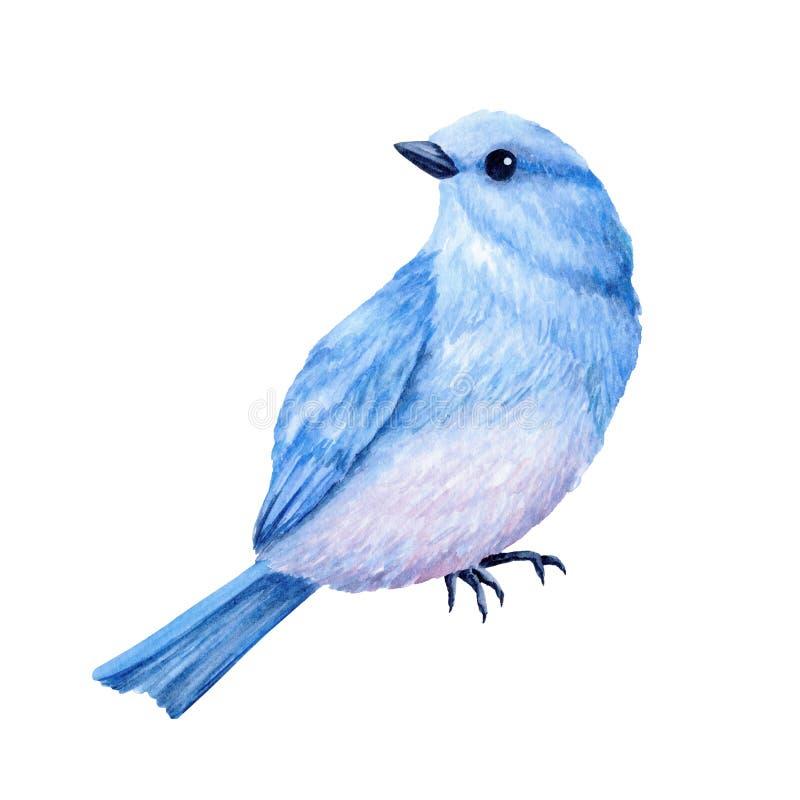 Śliczny mały błękitny ptak beak dekoracyjnego latającego ilustracyjnego wizerunek swój papierowa kawałka dymówki akwarela ilustracji