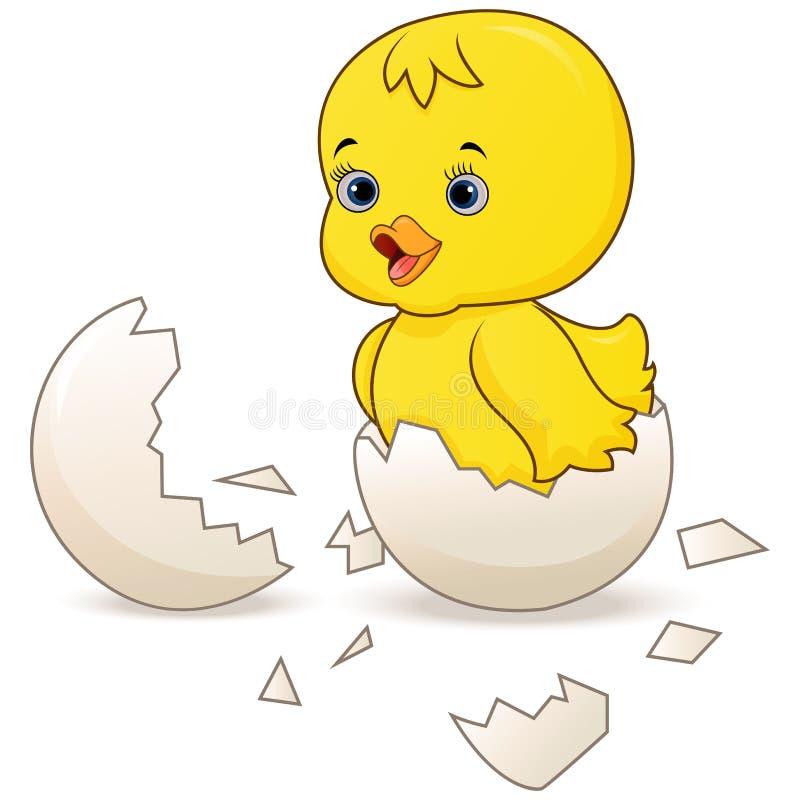 Śliczny mały kreskówki kurczątko kluł się od jajka odizolowywającego na białym tle royalty ilustracja