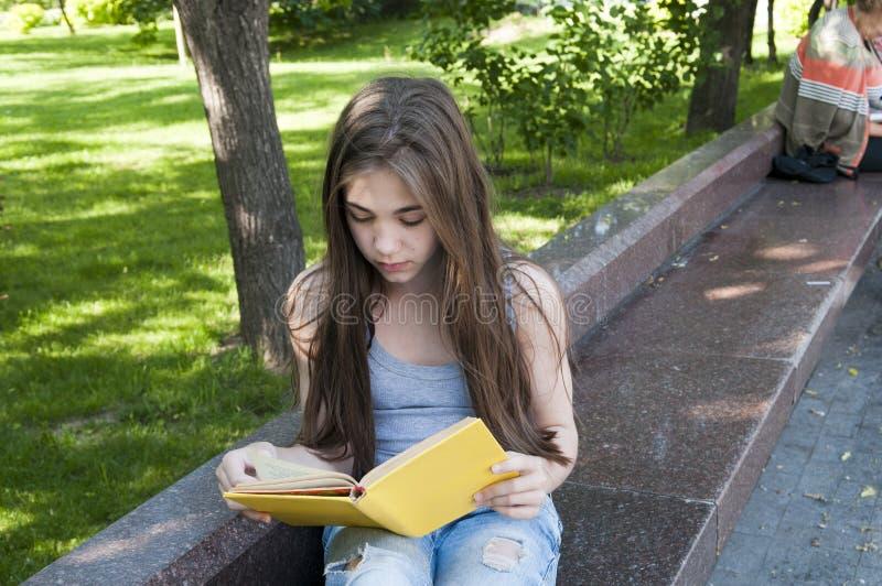 Śliczny nastoletniej dziewczyny czytelniczej książki obsiadanie na ławce w parku, studiowanie plenerowy zdjęcia stock