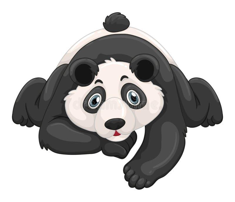Śliczny pandy czołganie na ziemi ilustracja wektor
