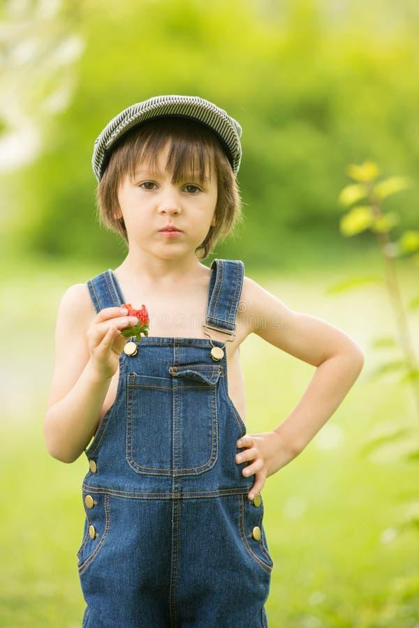 Śliczny piękny dziecko, chłopiec, jedzący truskawki w parku i fotografia royalty free