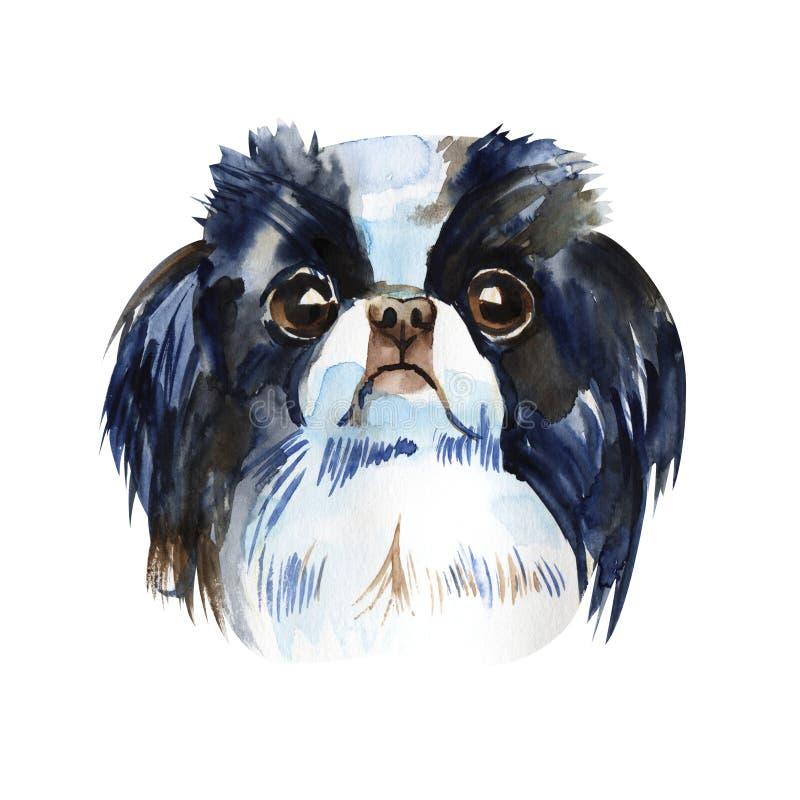 Śliczny pies - japoński podbródek akwareli ilustracja odizolowywająca ilustracja wektor