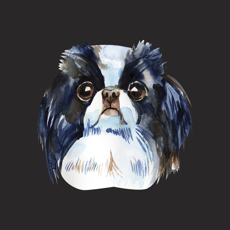Śliczny pies - japoński podbródek akwareli ilustracja odizolowywająca ilustracji