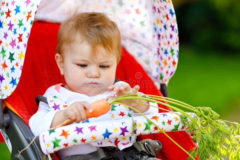 Śliczny uroczy dziewczynki mienie i łasowanie świeża marchewka Beatuiful dziecko ma zdrową przekąskę E zdjęcia royalty free