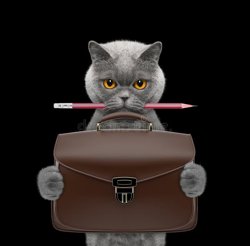 Śliczny urzędnika biznesmena kot z walizką lub torbą odizolowywającymi na czerni zdjęcia royalty free