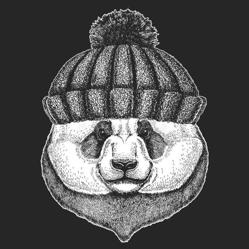 Śliczny zwierzę jest ubranym trykotowa kapeluszowa ręka rysującego zimy pandy niedźwiedzia wizerunek dla tatuażu, emblemat, odzna ilustracji