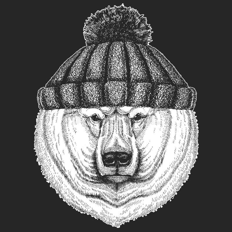 Śliczny zwierzę jest ubranym trykotowej zimy kapeluszowego Dużego niedźwiedzia polarnego, Białego niedźwiedzia ręka rysująca ilus ilustracji