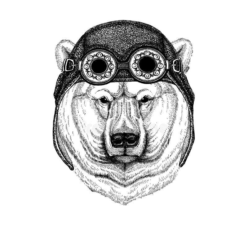 Śliczny zwierzęcy jest ubranym motocykl, lotnika hełma Duży niedźwiedź polarny, Białego niedźwiedzia ręka rysująca ilustracja dla ilustracji