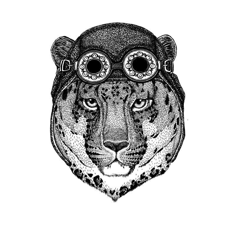 Śliczny zwierzęcy jest ubranym motocykl, lotnika hełma kota lamparta kota Dziki ` - halna ręka rysujący pantera obrazek dla tatua royalty ilustracja