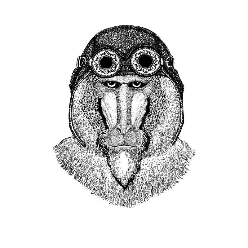 Śliczny zwierzęcy jest ubranym motocykl, lotnika hełma małpa, pawian, małpa, małpa ręka rysujący wizerunek dla tatuażu, emblemat, ilustracja wektor
