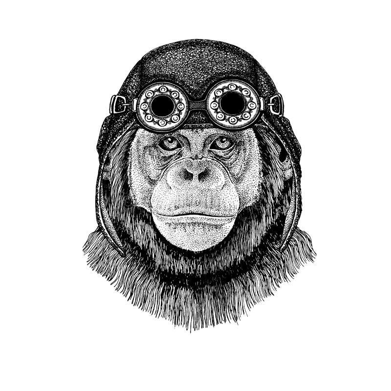 Śliczny zwierzęcy jest ubranym motocykl, lotnika hełma szympansa małpy ręka rysująca ilustracja dla tatuażu, emblemat, odznaka, l royalty ilustracja