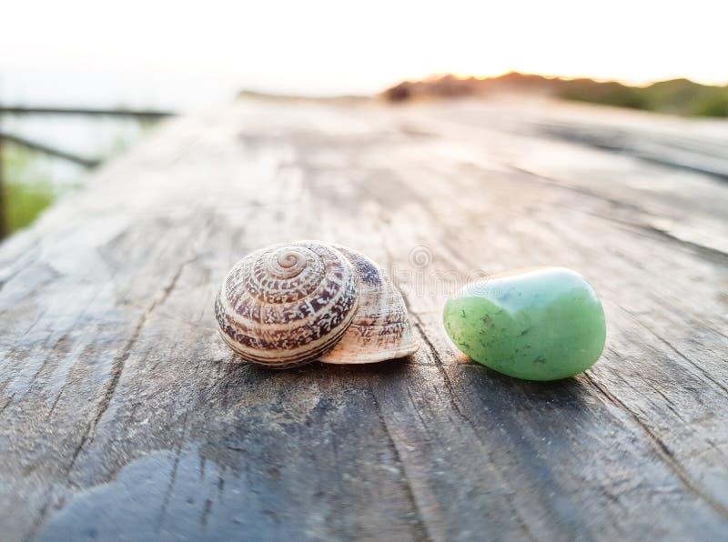 Ślimaczek skorupa i zieleń kamień na drewnianym stole fotografia stock