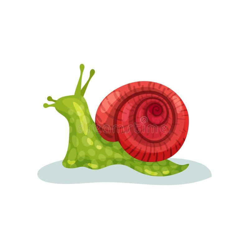 Ślimaczka gastropod mollusk z czerwonej skorupy wektorową ilustracją na białym tle ilustracji