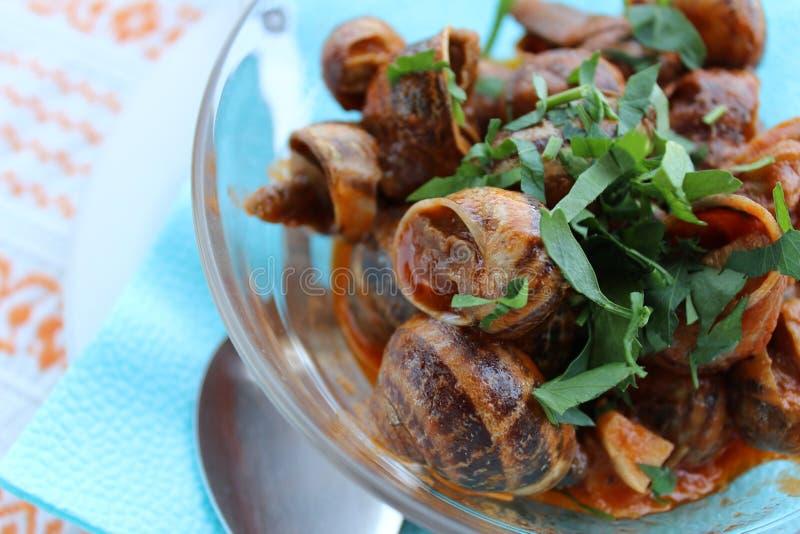 Ślimaczki w pomidorowym kumberlandzie, obrazy stock