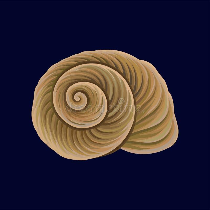 Ślimakowaty ślimaczka dom, skorupa lub, opróżniamy skorupę dennego mollusk wektorowa ilustracja na zmroku - błękitny tło ilustracja wektor