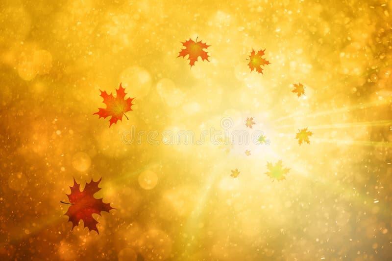 Ślimakowaty jesień liści klonowych tło ilustracji