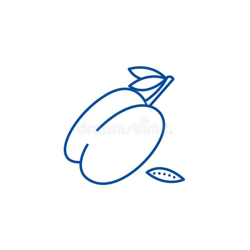 Śliwki ikony kreskowy pojęcie Śliwkowy płaski wektorowy symbol, znak, kontur ilustracja royalty ilustracja