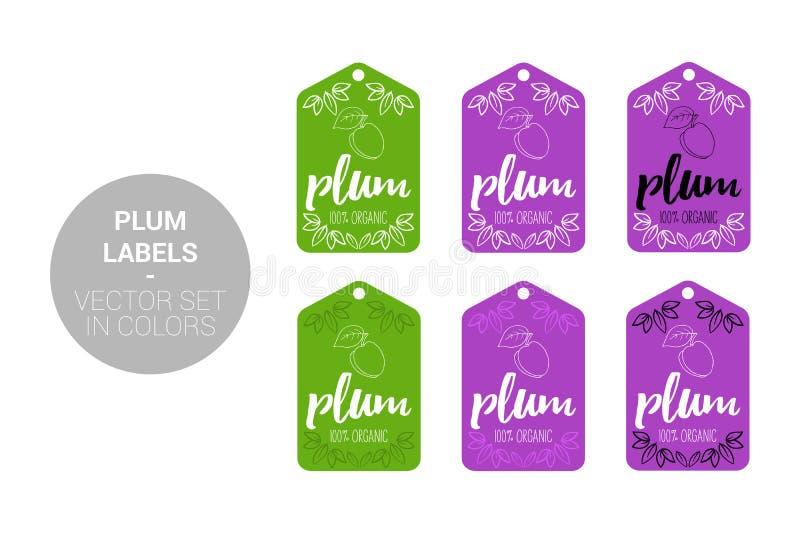 Śliwkowe owocowe Naturalne sklep etykietki ustawiają w zieleni, fiołków kolory ilustracji
