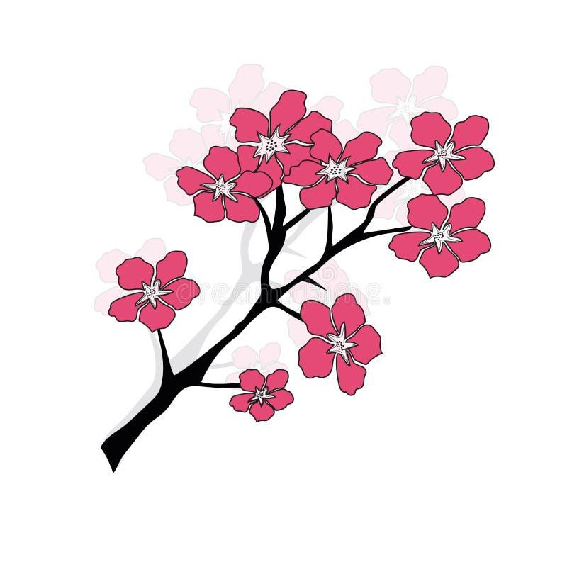 Śliwkowego lub czereśniowego okwitnięcia drzewa wzór royalty ilustracja