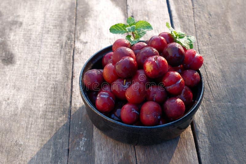 Śliwkowy Li owoc jest jednakowa Czerwoni zakazu Luang gatunki Ale rezultat będzie mały zdjęcie royalty free