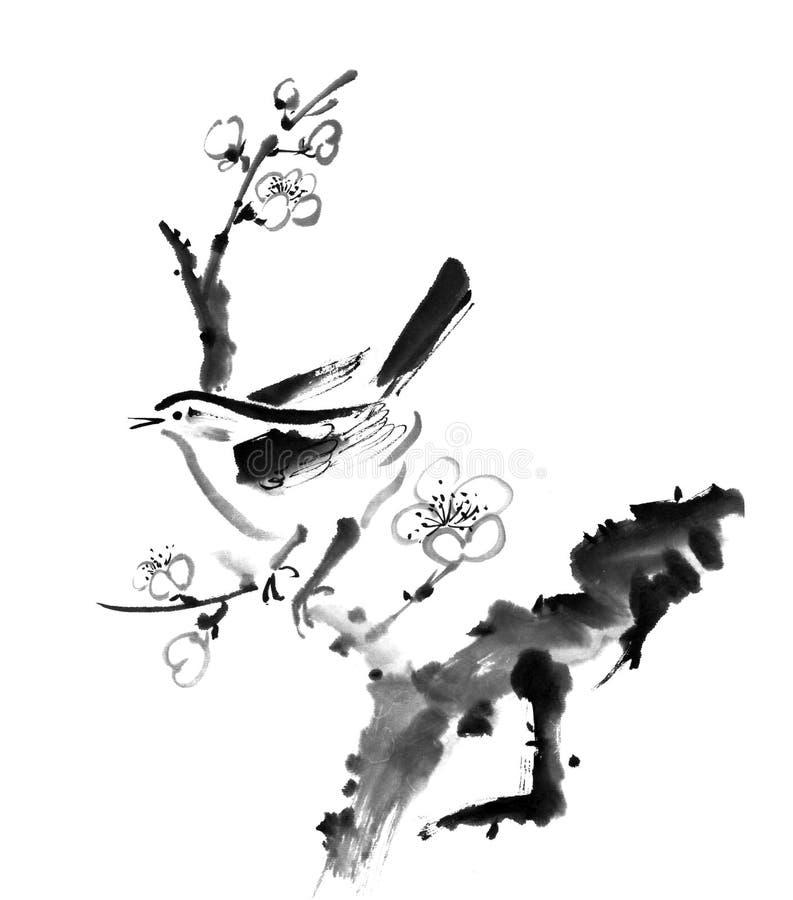 Śliwkowy okwitnięcie ilustracji