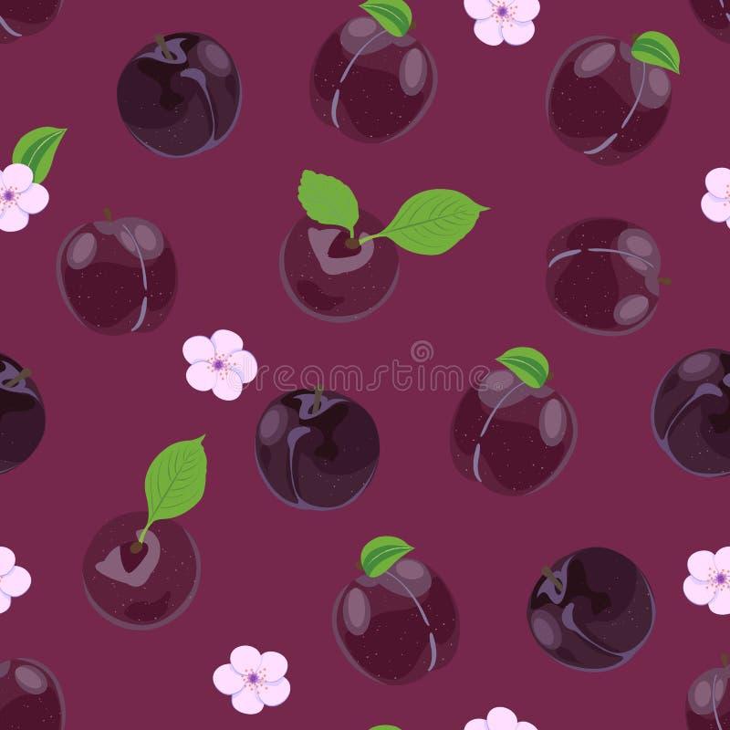Śliwkowych owoc bezszwowy wzór z kwiatem na purpurowym śliwkowym tle, Owocowa wektorowa ilustracja ilustracji