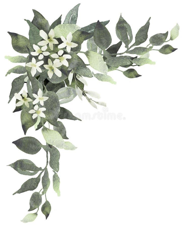 Ślubna greenery bukieta akwareli ilustracja z eukaliptusem royalty ilustracja