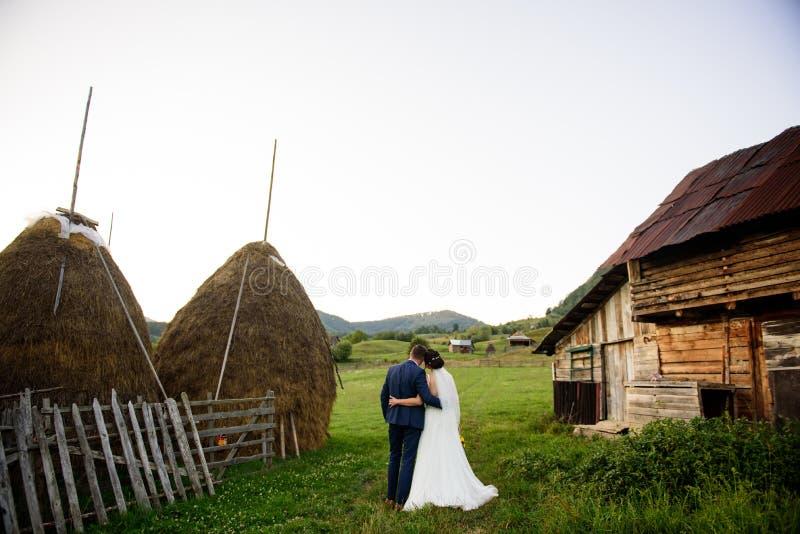 Ślubna para na zielonym polu fotografia royalty free