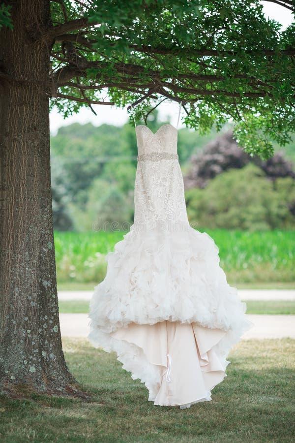 Ślubna toga w drzewie obrazy royalty free