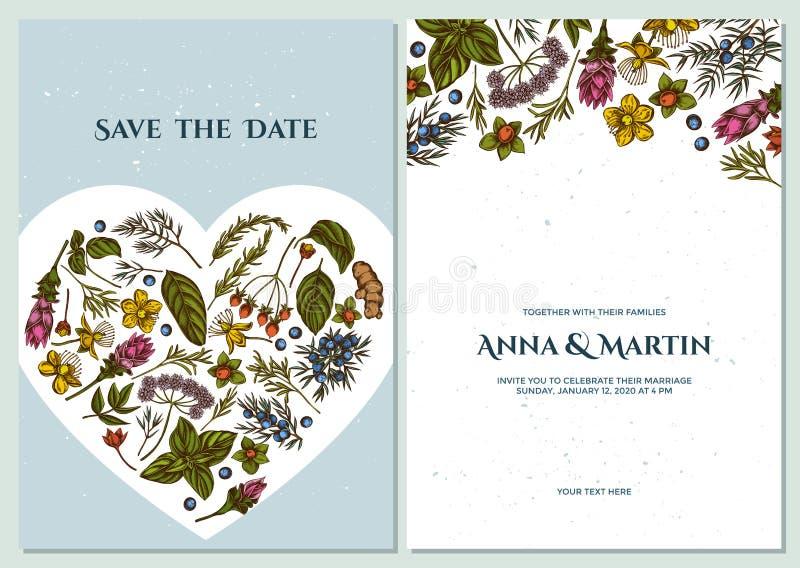 Ślubna zaproszenie karta z barwionym arcydzięglem, basil, jałowiec, hypericum, rozmaryn, turmeric ilustracji