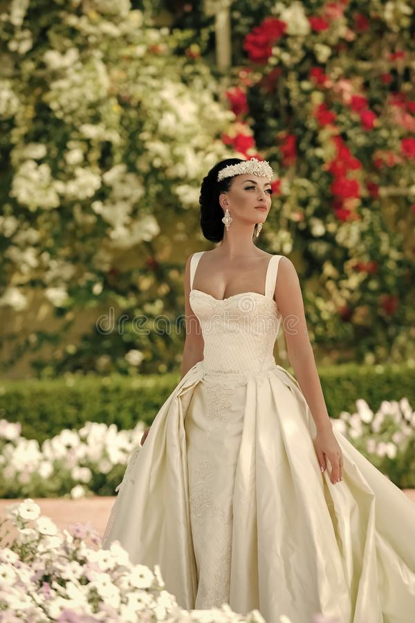 Ślubne dekoracje Dziewczyna lub kobieta w sukni i tiarze w brunetka włosy zdjęcia stock