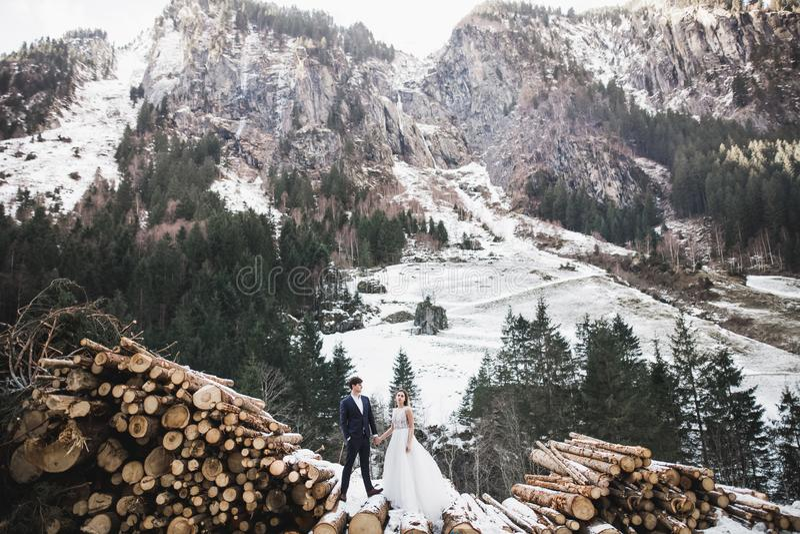 Ślubne pary mienia ręki, fornal i panna młoda na dniu ślubu, wpólnie fotografia stock