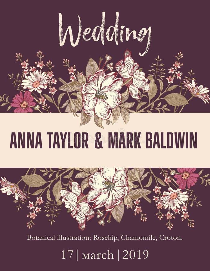 Ślubnego zaproszenia kwiatów rocznika karcianej ramy rytownictwa Piękny Rysunkowy Rosehip, chamomile, croton Wektorowa Ilustracyj ilustracji